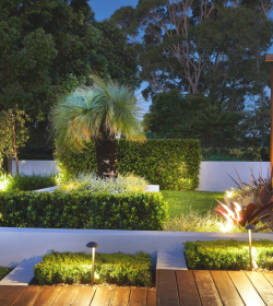 Lawn care tips for summer from Landscapers Sydney